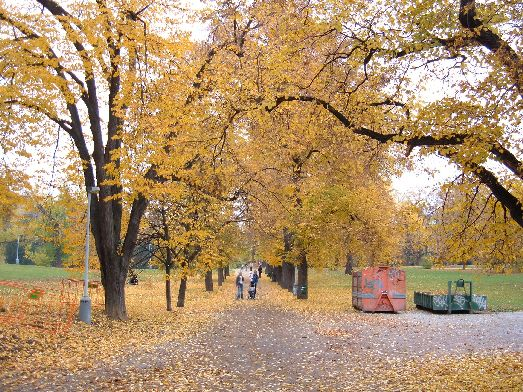 Пражский октябрь отдаёт золотистыми оттенками