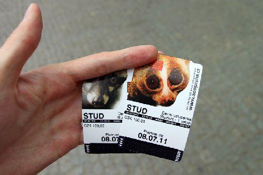 Входной билет в зоопарк выглядит вот так